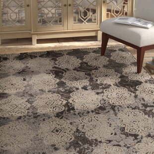Compare prices Pasho Beige/Black Area Rug ByBungalow Rose