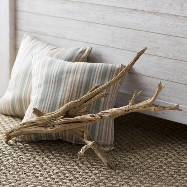 Decorative Natural California Driftwood Branch by Beachcrest Home