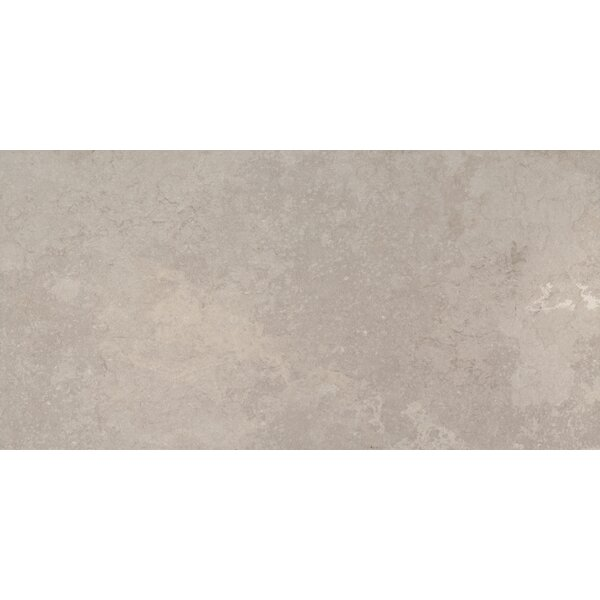 12 x 24 Ceramic Field Tile in Gray by MSI