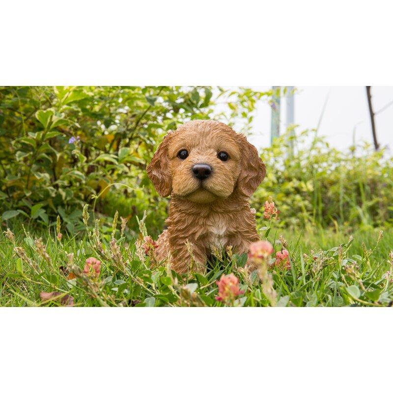 Hi-Line Gift Ltd Sitting Cockapoo Puppy Statue  Reviews  Wayfair-7685
