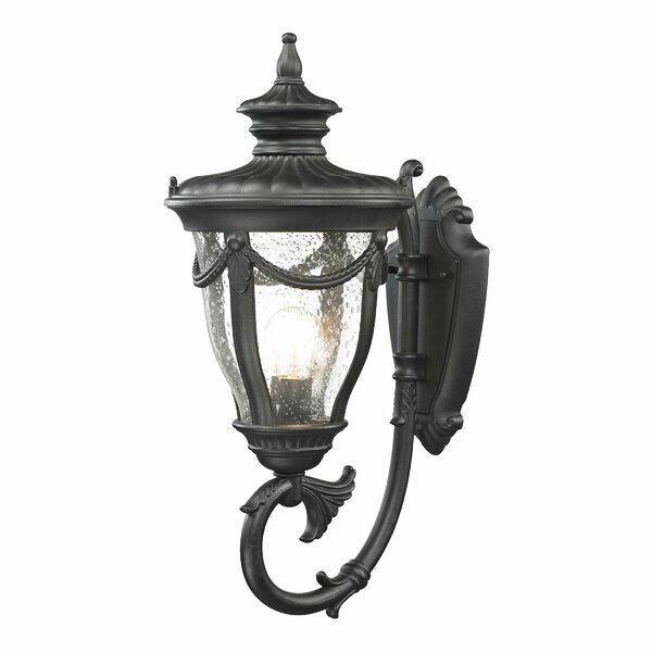 Santos 1-Light Outdoor Wall lantern by Astoria Grand