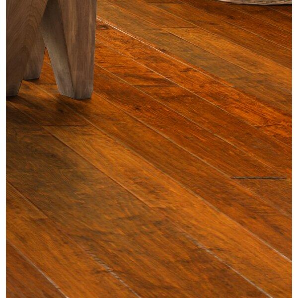 Olde Worlde 5 Engineered Maple Hardwood Flooring in Bath by Wildon Home ®