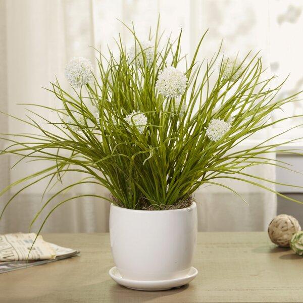 Spring Botanicals in Ceramic Planter by Birch Lane™