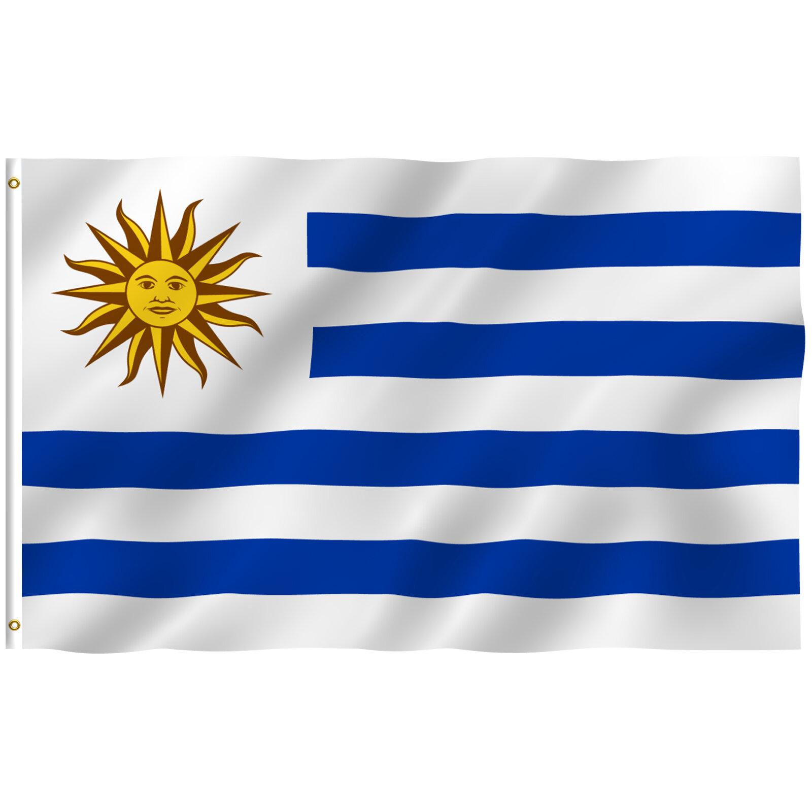 Anley Uruguay 2 Sided Polyester 36 X 60 In House Flag Wayfair