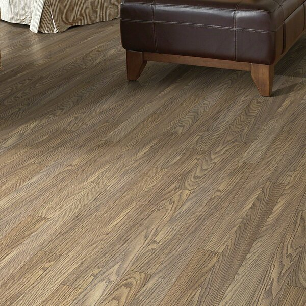 Maestro 4 x 48 x 8mm Laminate Flooring in Symbol by Shaw Floors