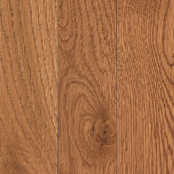 Walbrooke 3-1/4 Solid Oak Hardwood Flooring in Chestnut by Mohawk Flooring
