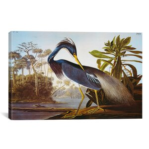 Lake Helen by John James Audubon Painting Print on Wrapped Canvas by East Urban Home