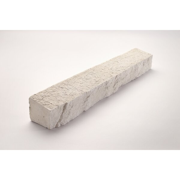 Wainscot Engineered Stone 3 x 20 Concrete Composite Speciality Exterior Tile Trim in White by Emser Tile