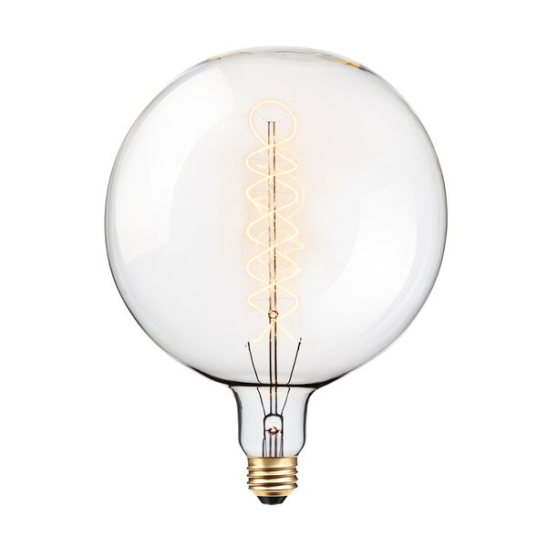 100W Incandescent Vintage Filament Light Bulb by Globe Electric Company
