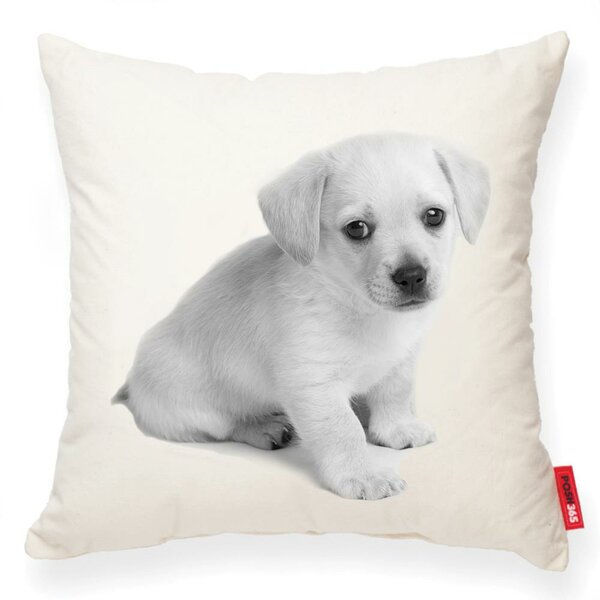 Gaddis Puppy Cotton Throw Pillow by Winston Porter