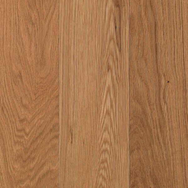 Brandon Dune 5 Solid Oak Hardwood Flooring in White Natural by Mohawk Flooring