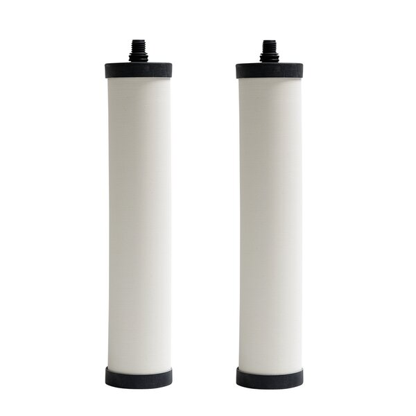 Under-sink Replacement Filter (Set of 2) by Franke