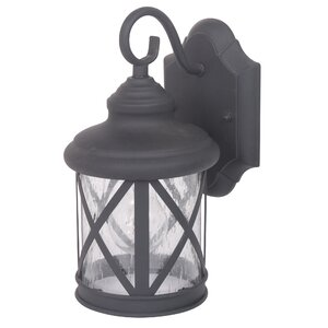 Ruggerio 1-Light Outdoor Wall Lantern