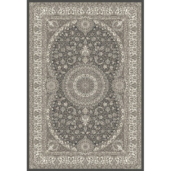 Lang Gray Area Rug by Astoria Grand