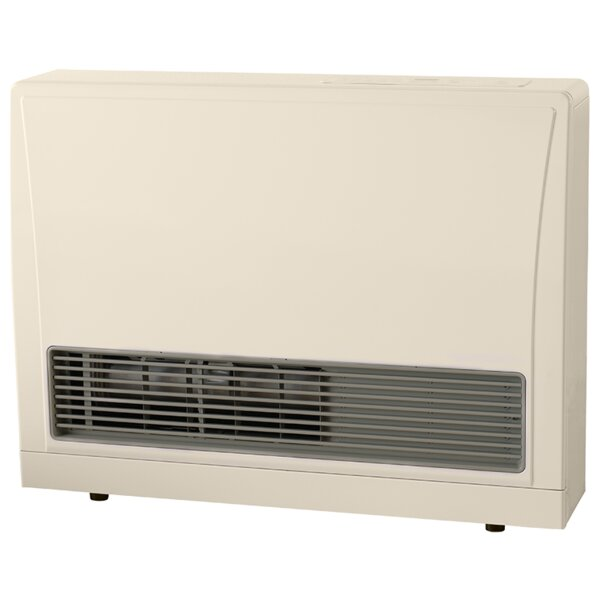 C Series Direct Vent 21,500 BTU Wall Insert Natural Gas Fan Heater by Rinnai