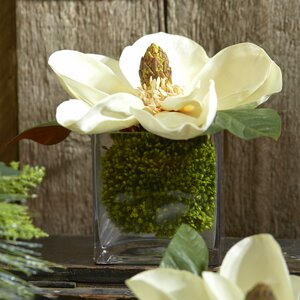 Faux Cream Magnolia in Vase
