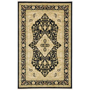 Affordable Britley Black/Beige Area Rug By World Menagerie