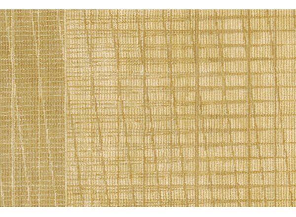 New Patina Gold Area Rug by Calvin Klein