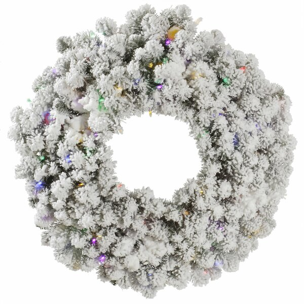 Flocked Kodiak Wreath by The Holiday Aisle