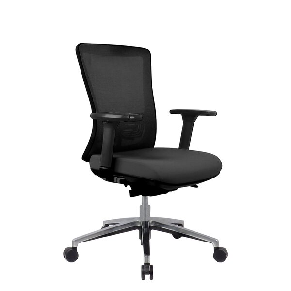 Younker Professional Ergonomic Mesh Office Chair by Symple Stuff