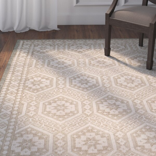 Baum Hand-knotted Beige Area Rug by Darby Home Co