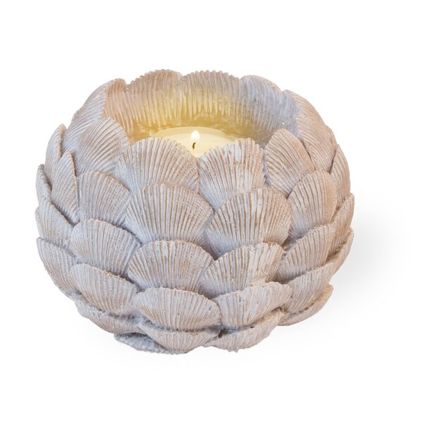 Shell Resin Tealight by The Holiday Aisle