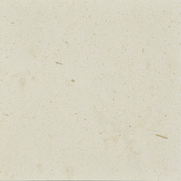 Osso 12 x 12 Limestone Field Tile in Creamy Latte by The Bella Collection