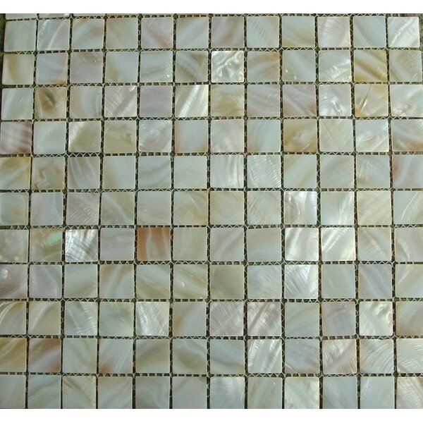 Mesh Mounted 1 x 1 Seashell Tile in Natural by Matrix-Z