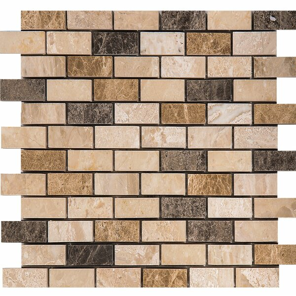 Valencia Mix Marble 1 x 2 Stone Mosaic Tile Polished by Parvatile