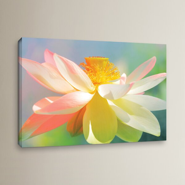 Dancing Queen Photographic Print on Wrapped Canvas by Zipcode Design