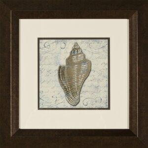 Bath Shells 2 Piece Framed Graphic Art Set by PTM Images