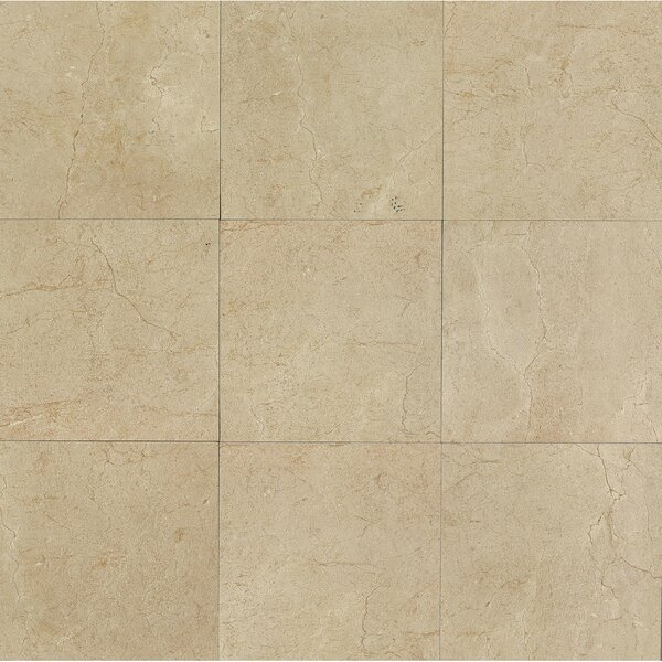 El Dorado 24 x 24 Porcelain Field Tile in Sand Polished by Grayson Martin