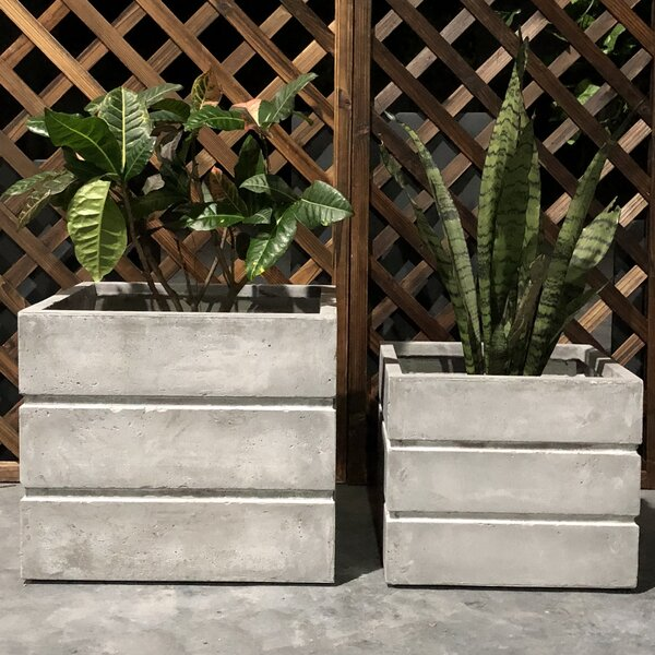 Gant Crate Square 2-Piece Planter Box Set by Williston Forge