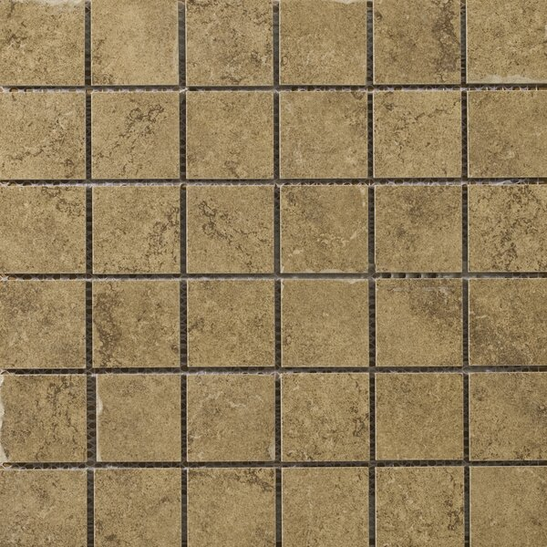 Genoa 2 x 2/13 x 13 Porcelain Mosaic Tile in Marini by Emser Tile