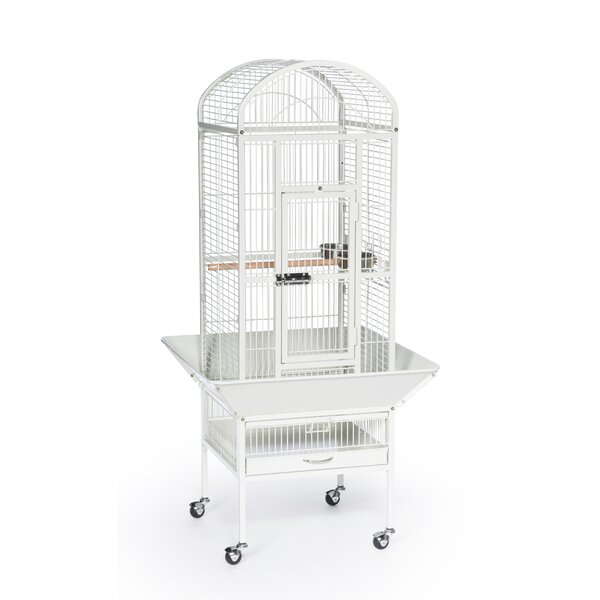 Small Dometop Bird Cage by Prevue Hendryx