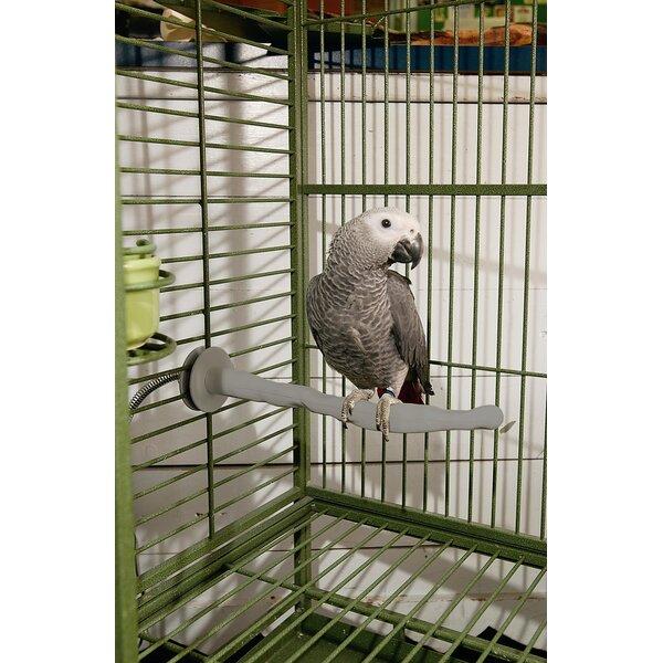 Heated Bird Perch by K&H Manufacturing