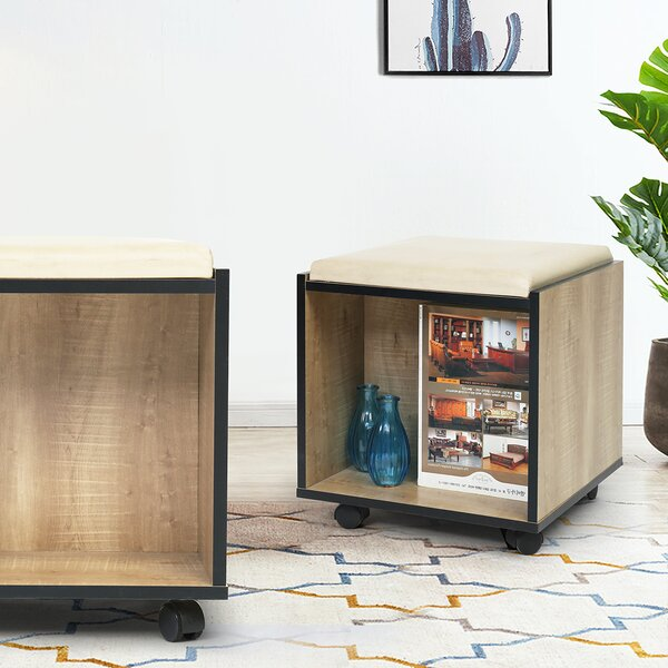 Latitude Run Storage Ottomans
