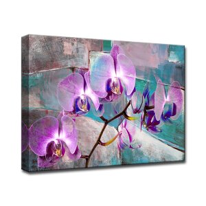 'Painted Petals XIX' Graphic Art on Canvas by Ready2hangart