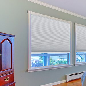 Easy Lift Trim-at-Home Cordless Blackout Fabric Cellular Shade