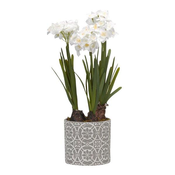 Desktop Flowering Plant in Planter by Bay Isle Home