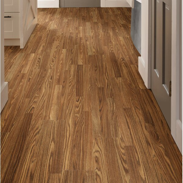 Simple 8 x 51 x 6mm Elegance Oak Laminate Flooring in Aspen by Shaw Floors