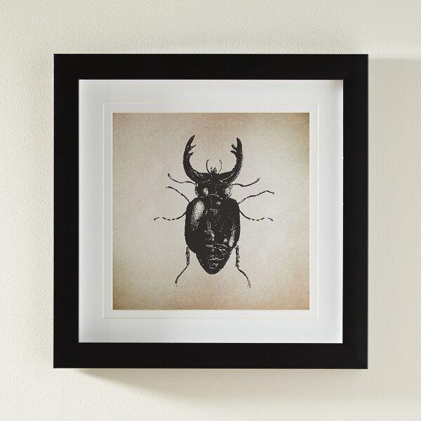 Beetle Framed Print by Birch Lane™