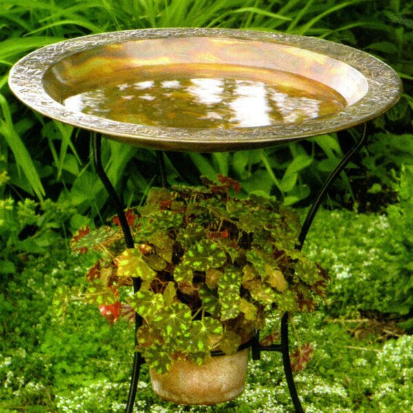 Copper Plated Steel Birdbath (Set of 2) by Ancient Graffiti