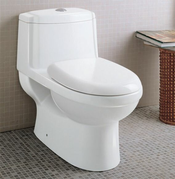 Ceramic Dual Flush Elongated One-Piece Toilet by EAGO