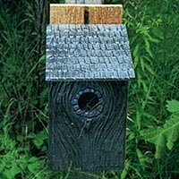 11 in x 8 in x 5 in Bluebird House by Montague Metal Products Inc.