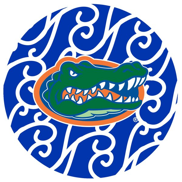 University of Florida Swirls Collegiate Coaster (Set of 4) by Thirstystone
