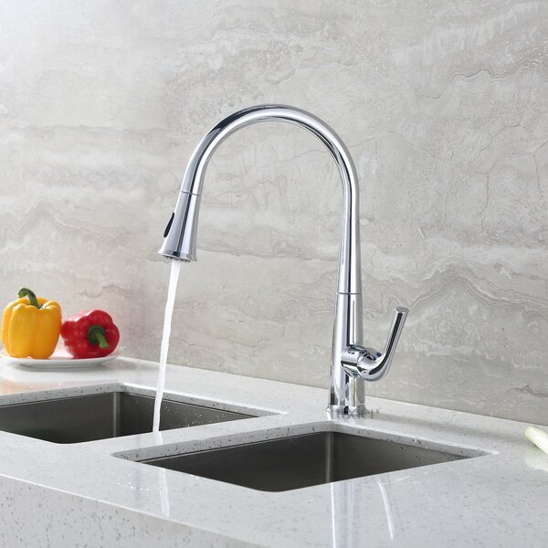 Contemporary Pull Down Single Handle Kitchen Faucet by Luxier
