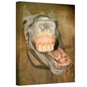 Laughing Horse' by Antonio Raggio Photographic Print on Canvas by ArtWall