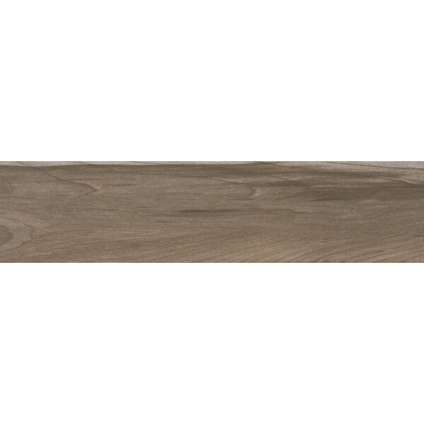 Carolina 6 x 24 Ceramic Wood Look/Field Tile in Beige by MSI