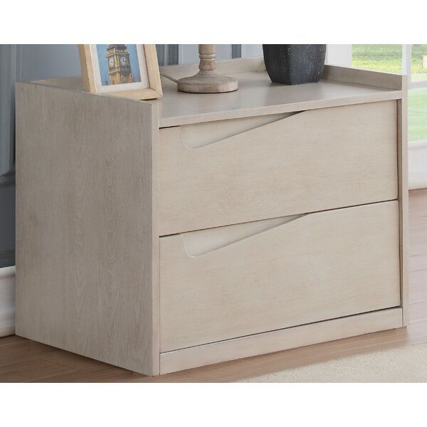 Dartmoor 2 Drawer Nightstand by Latitude Run
